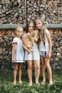 Kiln Died Ash Logs & Firewoods